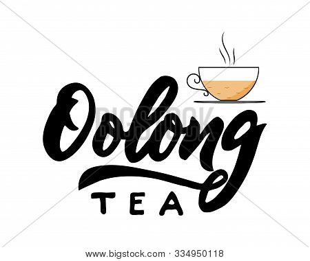 Oolong Type Of Tea With Cup. Hand Calligraphy Lettering With Cups. Vector Illustration. Template Of