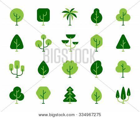 Green Tree Flat Cartoon Icons Set. Forest, Plant, Birch, Oak, Cedar, Poplar, Cypress, Maple, Palm, S