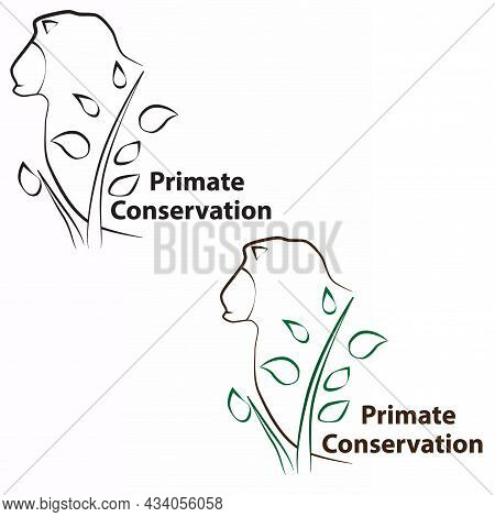 Primate Conservation Is Carried Out To Protect And Preserve Endangered Species So That They Continue