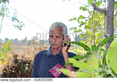 Close-up Of An Elderly Indian Farmer Or Gardener Standing In A Garden Or Field Talking To An Agricul