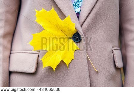 Beautiful Autumn Yellow Maple Leaf In The Pocket Of A Woman's Coat, Close-up. Autumn Background.back