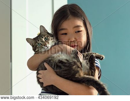 Child Portrait Wtih Domestic Pet, Cute Little Asian Girl Holding Tabby Cat In Her Arms At Home, Love