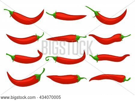 Hot Red Chili Peppers. Closeup Chilly Pepper, Cartoon Mexican Chilli Or Chillies Illustration, Vecto