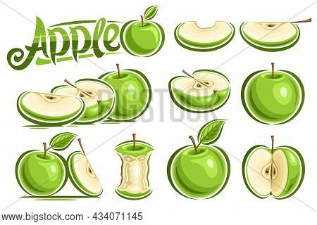 Vector Set Of Green Apples, Lot Collection Of Cutout Illustrations Whole And Sliced Natural Apples W