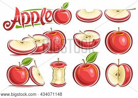 Vector Set Of Red Apples, Lot Collection Of Cut Out Still Life Compositions, Whole And Sliced Natura