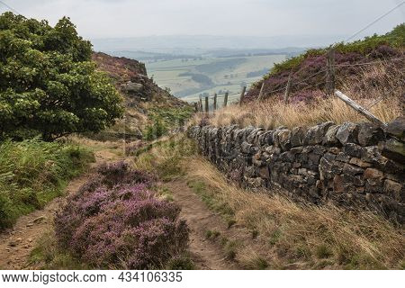 Beautiful Colorful English Peak District Landscape From Curbar Edge Of Colorful Heather During Late