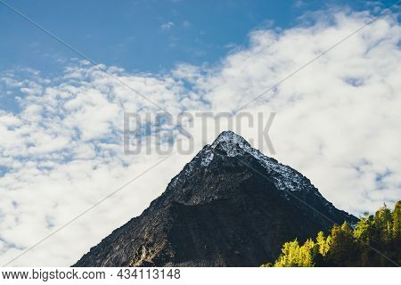 Scenic Sunny Landscape With Sunlit Coniferous Trees On Mountain And High Snowy Sharp Pinnacle Under