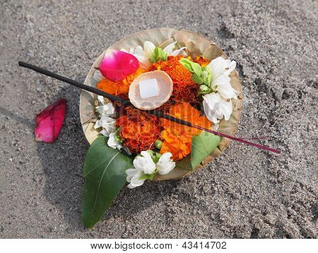 Flowers On The Sand