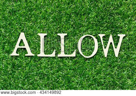 Wood Letter In Word Allow On Green Grass Background