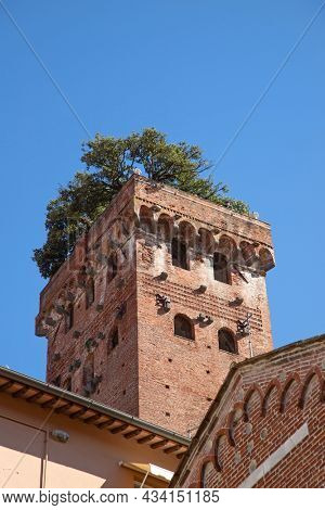 Historical medieval city Lucca in Tuscany, Italy