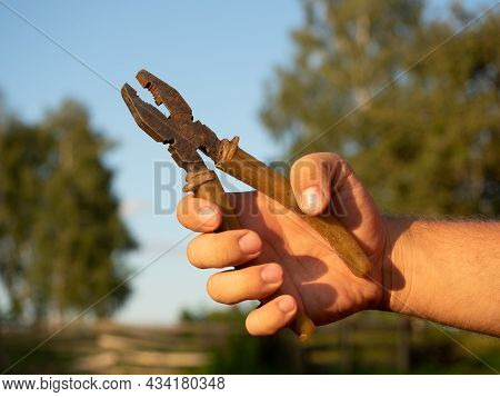 Close-up Of A Man's Hand Holding Old Dirty Pliers Against A Green Landscape. Sunlight, Tools