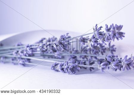 Dry Lavender In A Sheet Of Paper. A Bouquet Of Dried Flowers. The Photo Is Made In A Lilac Shade Of