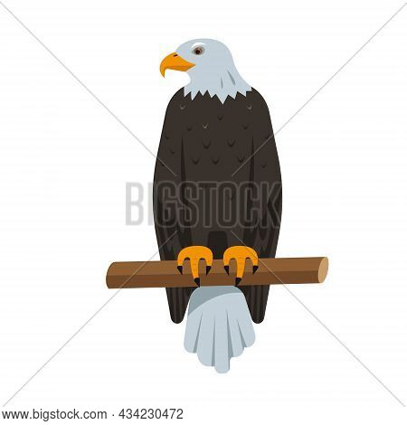 Sitting Bald Eagle Bird Icon Isolated On White Background. North American Eagle For Nature, Bird Wat
