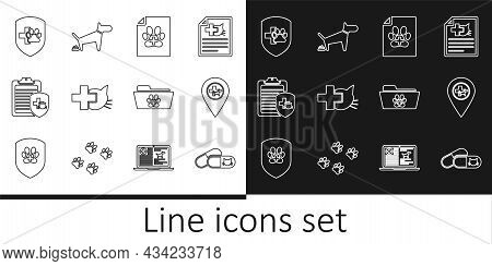Set Line Cat And Pills, Location Veterinary, Medical Certificate For Dog Or, Veterinary Clinic, Clin