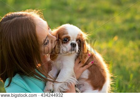 Closeup Portrait Breeder And Dog. Puppy Cavalier King Charles Spaniel Poses Walk With Owner At Sunse