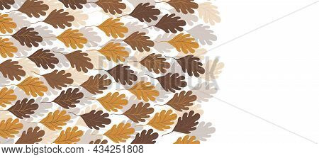 Floral Web Banner With Drawn Color Autumn Leaves. Nature Concept Design. Modern Floral Compositions