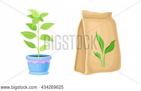 Set Of Gardening Tools. Potted Seedling And Seeds Packaging Cartoon Vector Illustration