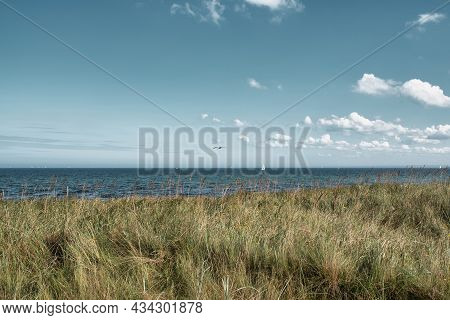 Grass Covered Dune And Baltic Sea Against Beautiful Sky