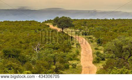 Dirt Road Through Hilly Savanna Under Evening Light In Kruger National Park, South Africa