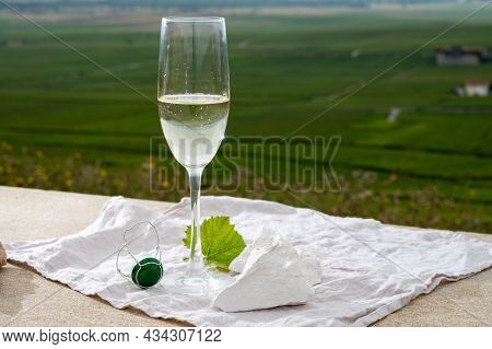 Glass Of White Brut Blanc De Blancs Champagne Wine And Examples Of Vineyard Soils, White Chalk Stone