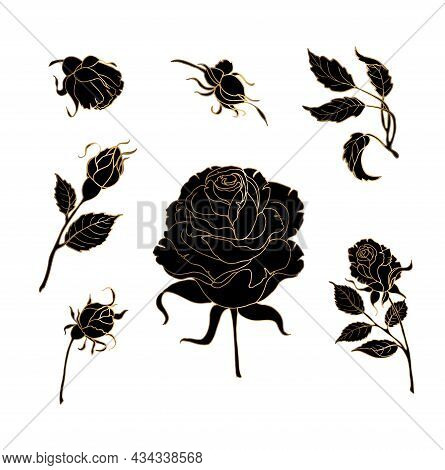 Black Silhouette Of A Rose With Gold. On White Background. Vector Illustration.
