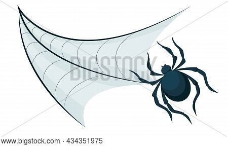 Vector Drawing Of Cobweb And Spider Isolated On White Background. A Decorative Element In The Form O