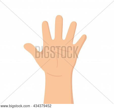 Human Hand With Five Fingers. The Palm Is Like A Sense Organ. Part Of The Body. The Organ Of Touch.