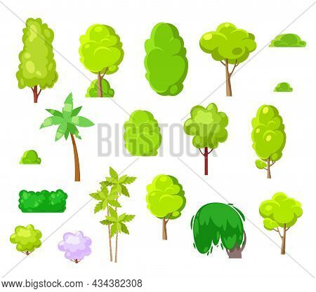 Landscape Design Cartoon Trees, Plants, Shrubs And Palms. Vector Park And Tropical Trees Isolated On