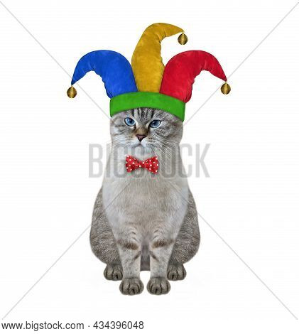A Ash Cat Clown In A Jester Hat Is Sitting. April Fool's Day. White Background. Isolated.