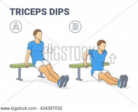 Man Doing Bench Triceps Dips. Workout Exercise Guide. Colorful Concept Guy Working On His Triceps.