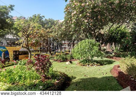 Funchal, Portugal - August 20, 2021: This Is An Urban Municipal Park In The Downtown On The Site Of