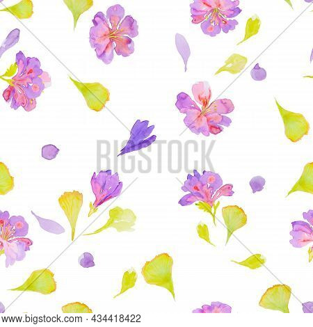 Delicate Romantic Seamless Watercolor Floral Pattern With Hand Drawn Field Wild Flowers On White Bac