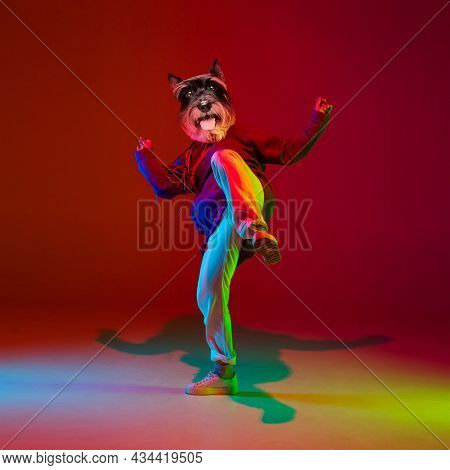 Art Collage. Young Man, Hip Hop Dancer Headed Of Dogs Head Dancing Isolated Over Dark Red Background