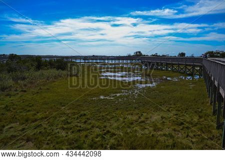 The Life Of The Marsh Trail, An Elevated Wooden Curved Boardwalk Looping Around A Bayside Marsh Habi