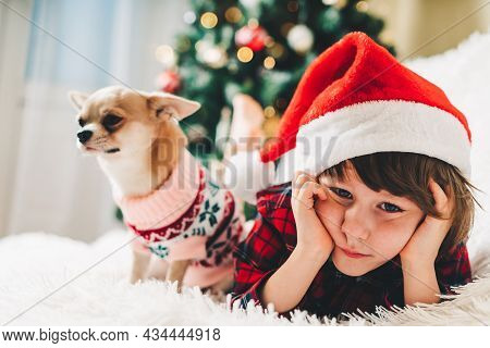 Merry Christmas. Happy Little Child And Puppy Dog In Sweater Playing, Hug And Having Fun On Couch Wi