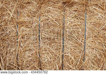 Natural Background With Hay And Straw For  Interior Or For Postcard With Hay And Straw With Large  C