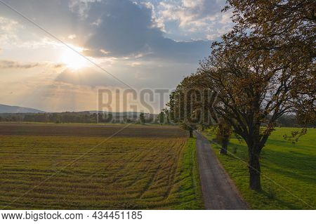A Vast Plain Covered With Arable Fields And Green Meadows. A Dirt Road Is Visible In The Center Of T