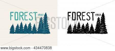 Christmas Trees Emblem Or Badge. Fir Forest. Engraved Hand Drawn In Old Vintage Sketch. Doodle Woode