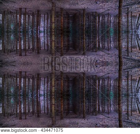 Mystical Magic Fall Symmetrical Magical Forest Scene