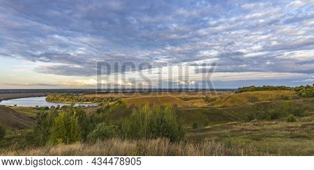 Cows On A Green Field Grazing On A Farmer\\\'s Green Grass. Beautiful Landscape With Cows In The Sum