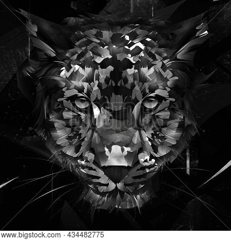 Drawn Portrait Of Leopard Muzzle On Dark Background