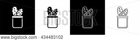 Set Cactus Peyote In Pot Icon Isolated On Black And White Background. Plant Growing In A Pot. Potted