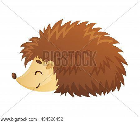 Cute Adorable Hedgehog Baby Animal Cartoon Vector Illustration On White Background