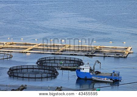 Fisherman boat and fishing nets in harbor poster