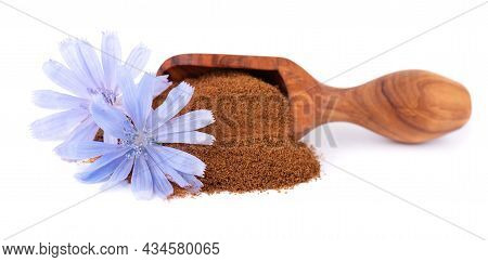 Chicory Powder And Flower In Wooden Scoop, Isolated On White Background. Cichorium Intybus.