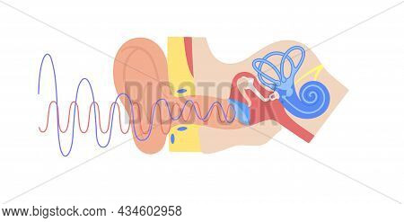 Audiometry Test Concept. Ear Anatomy Medical Poster. Deafness Disease. Hearing Loss Problems. Semici