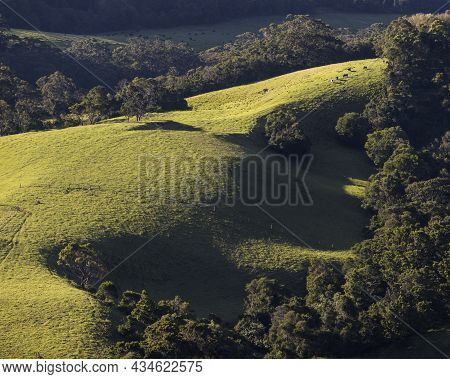 A Close Up Of A Hillside From Saddleback Mountain On Nsw South Coast
