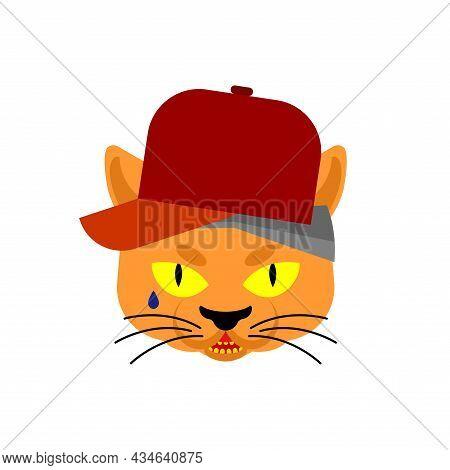 Cat Gangsta Face. Angry Pet Muzzle. Animal Bully Member Of Gang Of Street Criminals