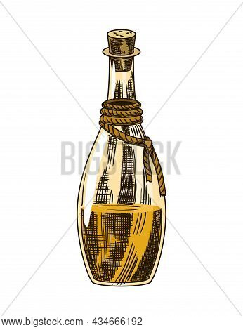 Cane Sugar. Product From Sugarcane Plant. Engraving Hand Drawn Natural Organic Food Or Natural Ingre