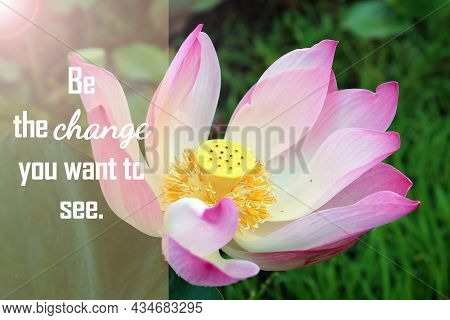 Inspirational Motivational Words - Be The Change You Want To See. With Pink Lotus Flower Or Nelumbo